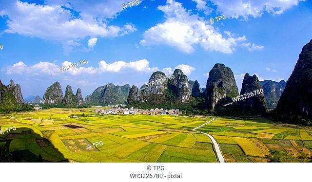 Golden autumn scenery;China