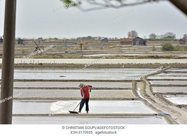 salt fields near Lasem, Java island, Indonesia, Southeast Asia