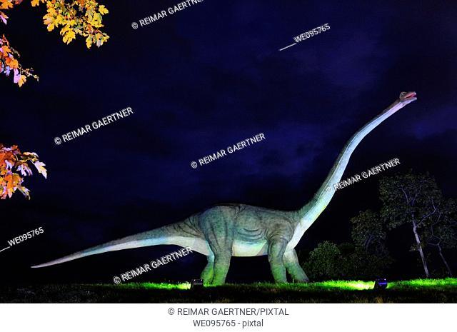 Moving Apatosaurus model at night at Ontario Place Toronto