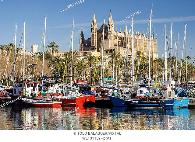 View of the Cathedral from Moll de la Riba, Palma. Majorca, Balearic Islands, Spain
