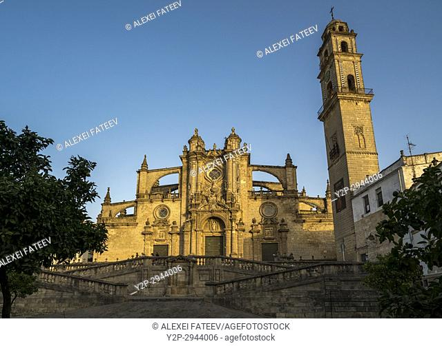 Cathedral of San Salvador in Jerez de la Frontera, Andalucia, Spain