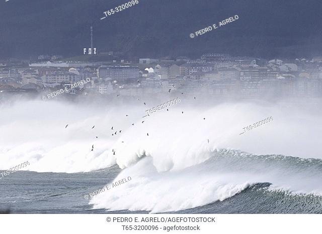 Lugo, Ribadeo, Costa Lucense .-Maritime Temporal. Jan 4, 2018. The strong maritime storm that has hit the peninsular north coast this week and has claimed the...