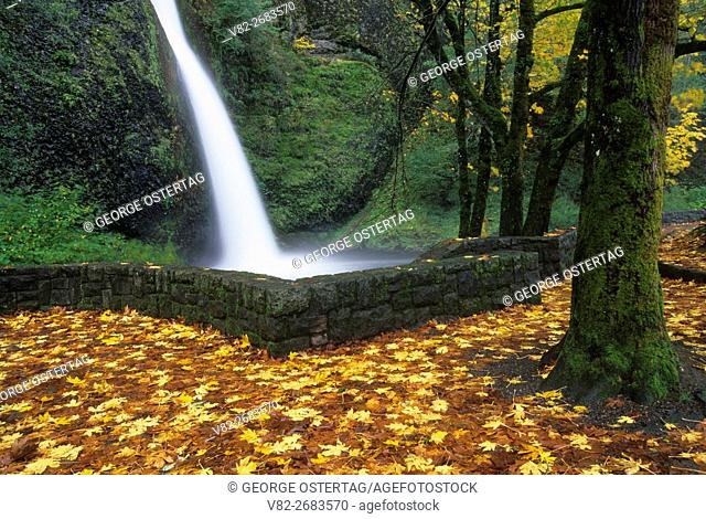 Horsetail Falls, Mt Hood National Forest, Columbia River Gorge National Scenic Area, Oregon