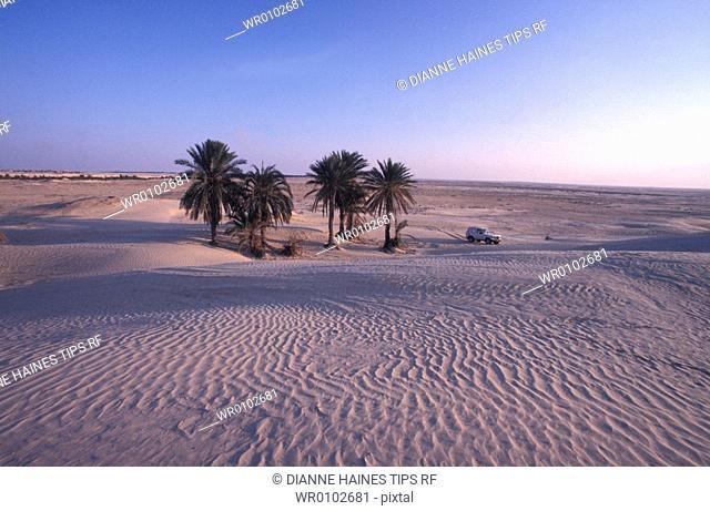 Tunisia. Sahara desert, Zaafrane dunes and fourwheel car