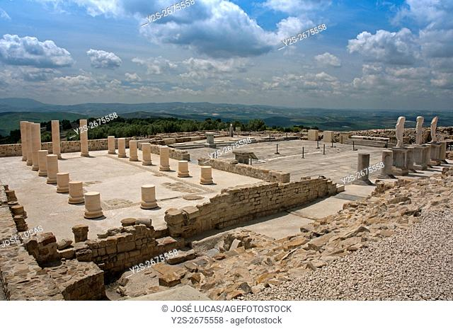 Torreparedones, iberian-roman archaeological park, Basilica and Forum-1st century, Baena, Cordoba province, region of Andalusia, Spain, Europe