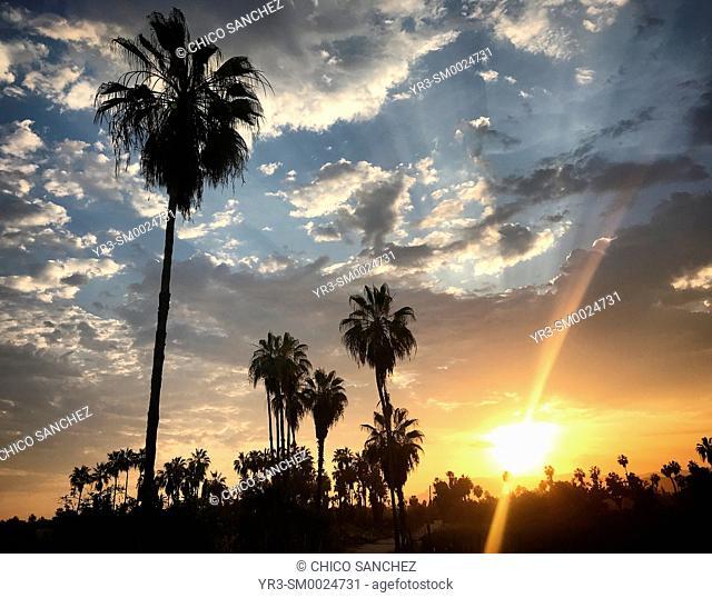 Sunrise in Todos Santos, Baja California, Mexico
