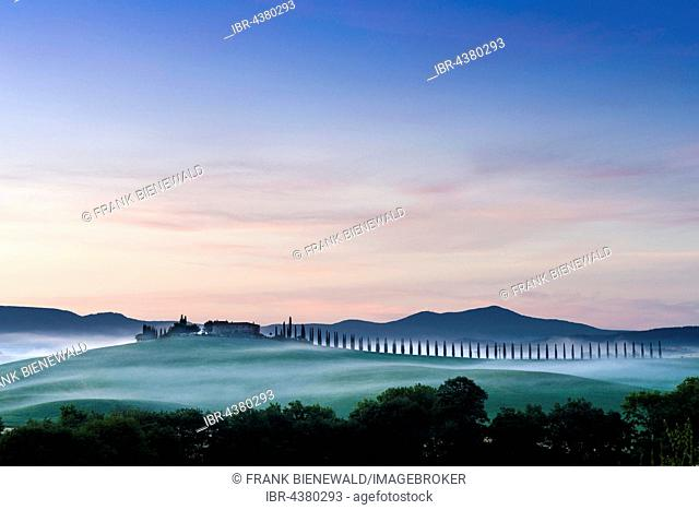 Typical green Tuscan landscape in Bagno Vignoni, Val d'Orcia with a farm on a hill, fields, cypresses, trees and morning fog before sunrise, San Quirico d'Orcia
