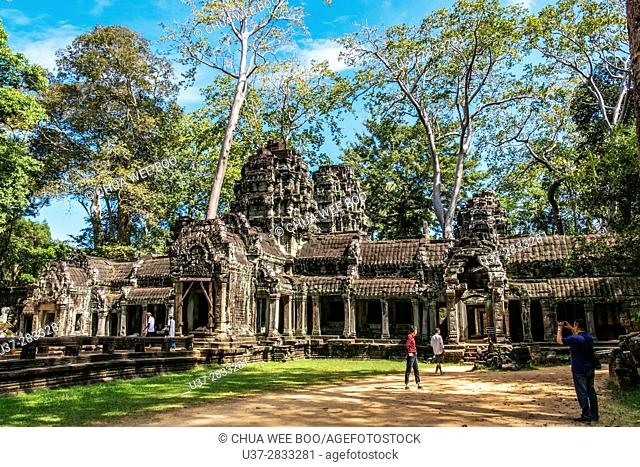 Angkor Temples Complex - tree growing out of the ruins of the the Ta Prohm Temple, Angkor, Siem Reap Province, Cambodia, Asia, UNESCO