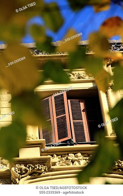 Rambla Catalunya, window with shutters, Barcelona, Catalonia, Spain
