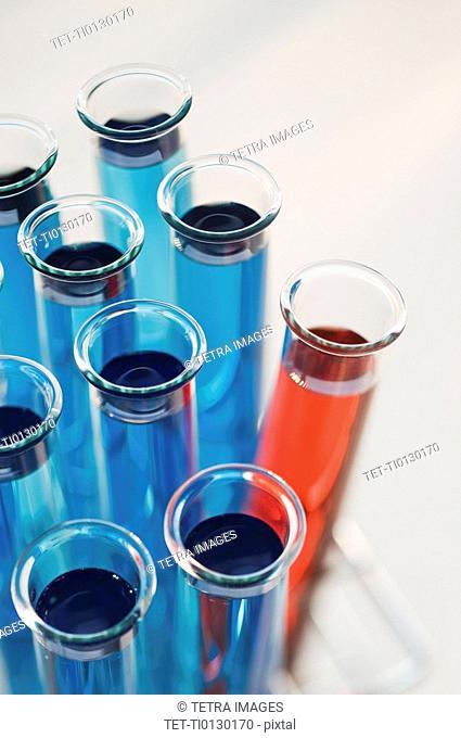 Vials of liquid in tray