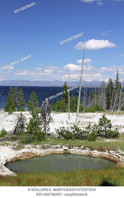 Hot spring, West Thumb Geyser Basin, Lake Area, Yellowstone National Park, Wyoming, USA