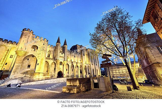 The Papal palace. UNESCO World heritage site. Avignon. Provence-Alpes-C™te d'Azur. France