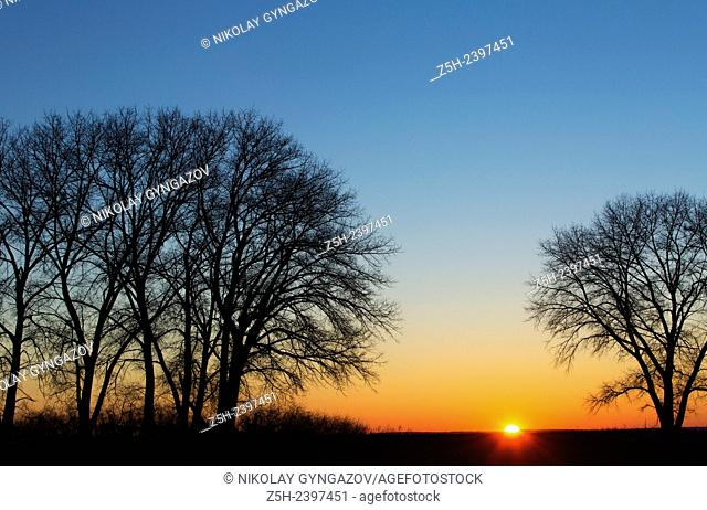 Russia. Belgorod region. Dawn on the edge of the field