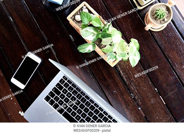 Overhead view of cell phone and laptop on wooden table with plants