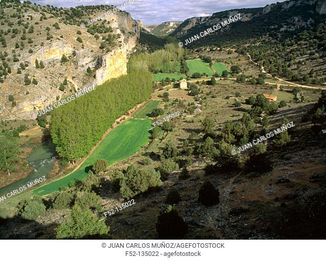 'Hoces del Río Riaza' near Montejo. Segovia province. Castilla-Leon, Spain