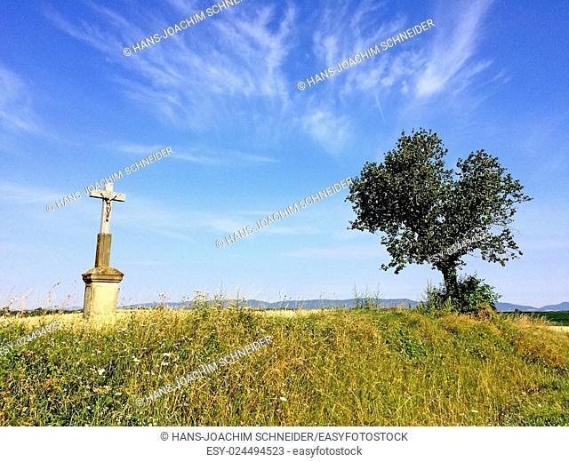 Cross in cornfield