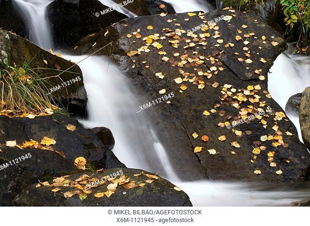 Cascade  Artiga de Lin  Aran Valley  Lerida province  Catalonia, Spain, Europe
