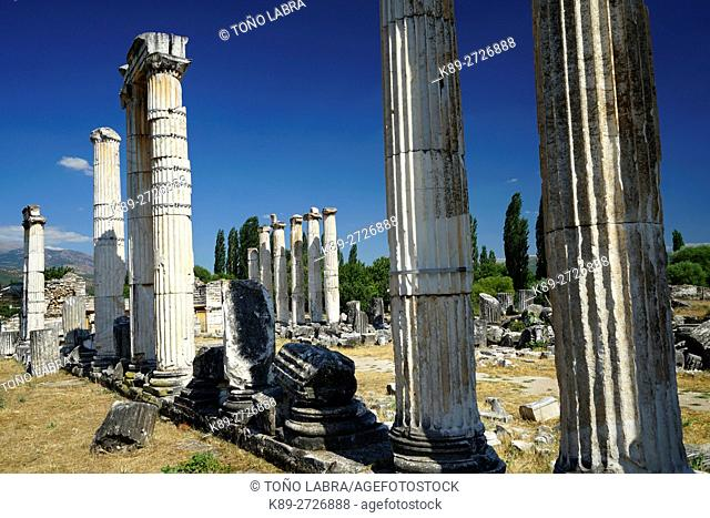 Temple of Aphrodite. Aphrodisias. Ancient Greece. Asia Minor. Turkey