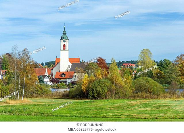 Germany, Baden-Wurttemberg, Kisslegg, local view over the nature reserve Zellersee to the parish church St. Gallus and Ulrich