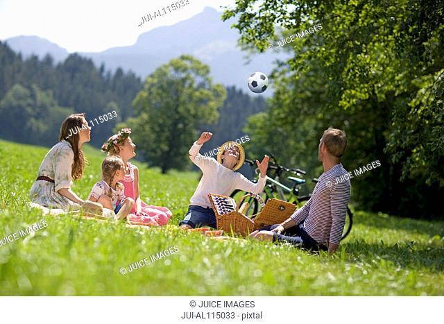 Family having picnic in meadow