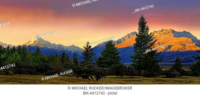 snowy peak of Mount Cook, Aoraki and bush landscape at sunset, Mount Cook National Park, New Zealand Alps, South Island, New Zealand