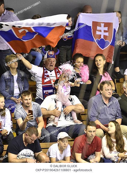Slovak ice hockey fans are seen during the Euro Hockey Challenge match Slovakia vs Czech Republic in Trencin, Slovakia, April 26, 2019