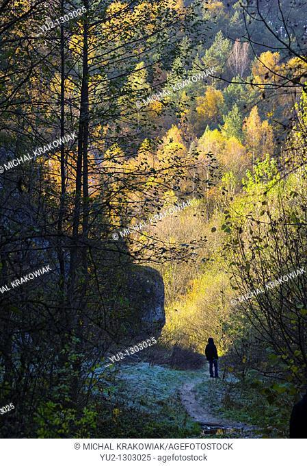 Autumn in jurassic valley near Krakow, Poland