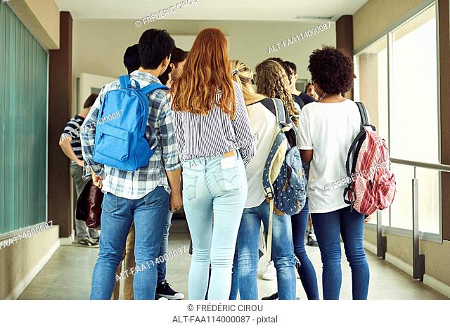 Group of students standing in school corridor, rear view
