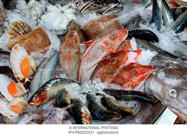 England Dorset Weymouth Dorset Seafood Festival Seafood on ice Peter Baker