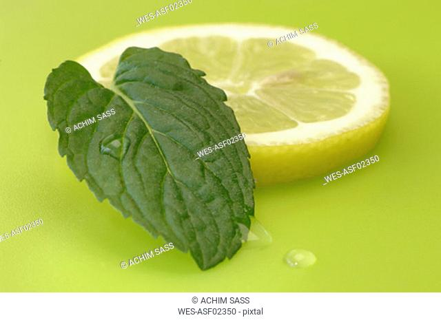 Lemon slice and mint leaf