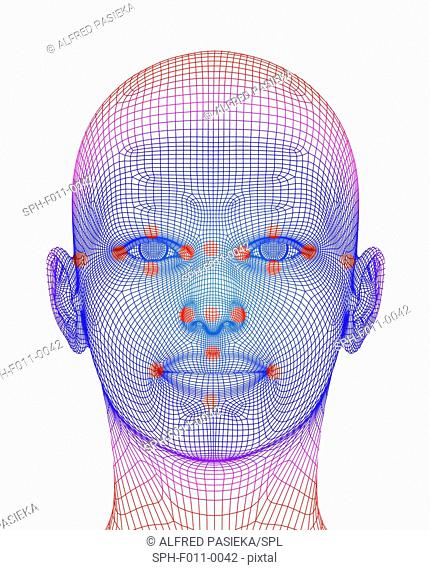Biometric facial map. Human face with markers of facial recogniction software. The identification of a behavioural or physical trait for recognition purposes is...