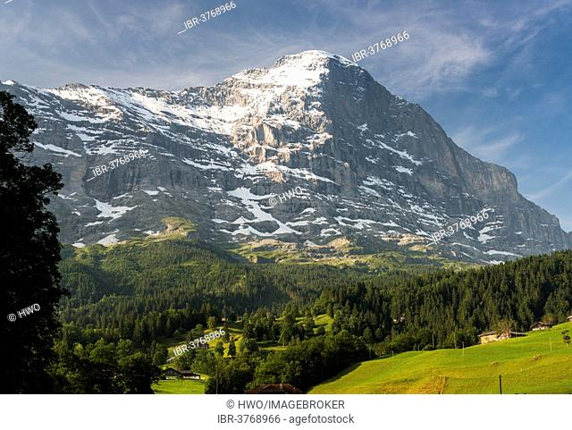 Eiger North Face in the morning, Swiss Alps Jungfrau-Aletsch UNESCO World Heritage, Grindelwald, Canton of Bern, Switzerland
