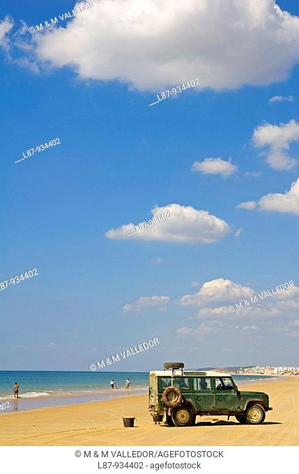 Dunes and beach in the Natural Park of Doñana, Doñana, Huelva, Andalucia, Spain, Europe