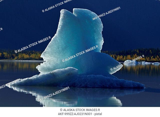 Icebergs float on the calm surface of Mendenhall Lake, Mendenhall Glacier, Juneau, Southeast Alaska, Autumn