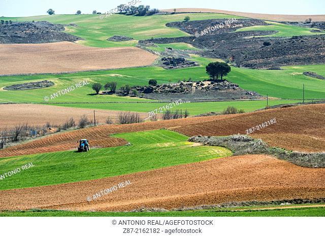 Villares del Saz, Cuenca province, Castilla-La Mancha, Spain