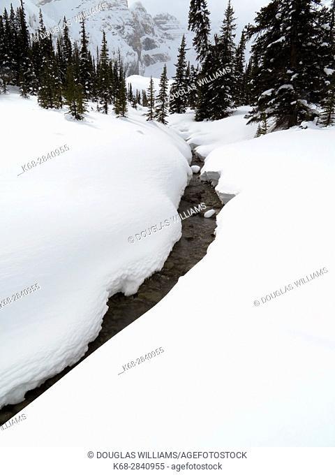A stream in Winter in Jasper National Park, Alberta, Canada