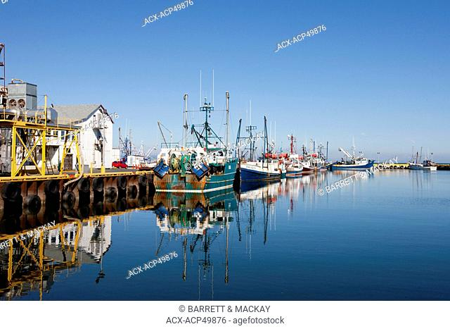 Fishing fleet docked at wharf, Caraquet, New Brunswick, Canada