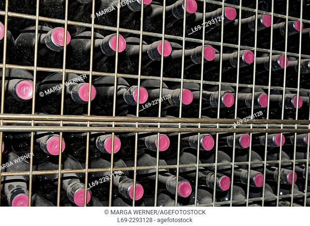 Winery Quinta de São Domingos, Peso da Régua, Douro valley, Portugal, Europe