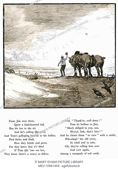 Illustration by Cecil Aldin, Forty Fine Ladies, with text by Patrick R Chalmers. The Kill -- a farm lad called Jim waves to the hunt as they pursue the fox