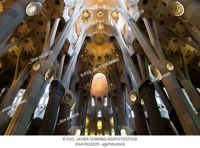 Interior view, Sagrada Familia, Barcelona, Catalonia, Spain