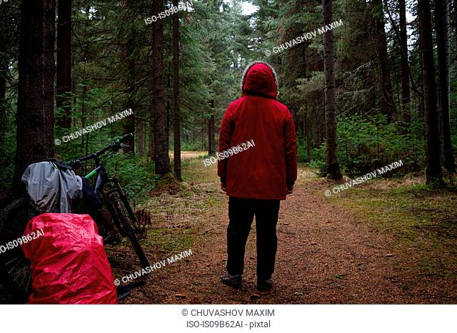 Rear view of male mountain biker in red parka looking out at forest