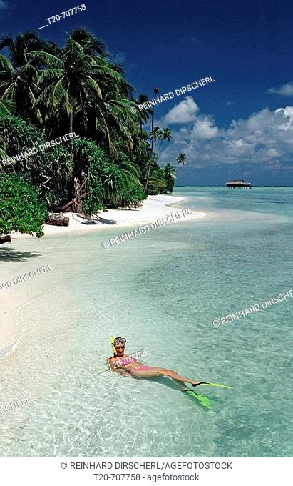 Snorkeling close to Island, Maldives, Indian Ocean, Medhufushi, Meemu Atoll