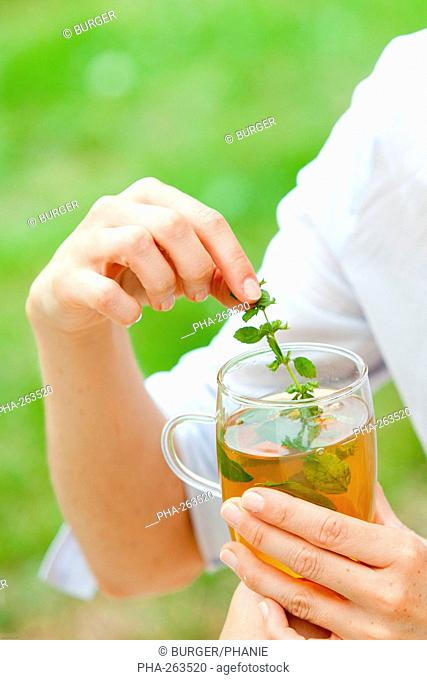 Woman drinking aromatic herbal infusion made from lemon balm leaves