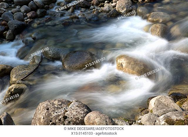Swirling white water in Kokanee Creek in British Columbia, Canada, is created by water flowing around boulders in the stream bed makes for pristine water and...