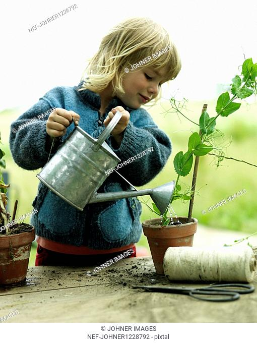 Blonde girl watering potted plant