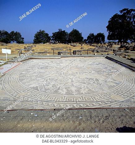 Mosaic floor, ancient city of Vergina (Unesco World Heritage List, 1996), Macedonia, Greece. Macedonian civilization, 4th Century BC