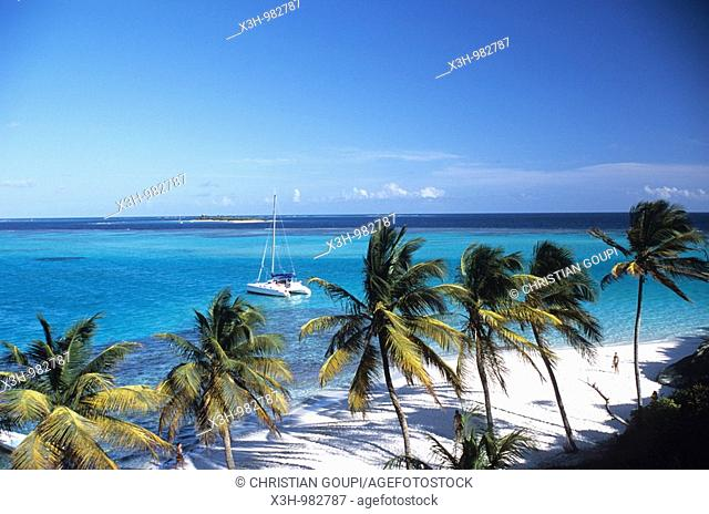 Jamesby,Tobago Cays,Grenadines islands,Saint Vincent and the Grenadines,Winward Islands,Lesser Antilles,Caribbean Sea