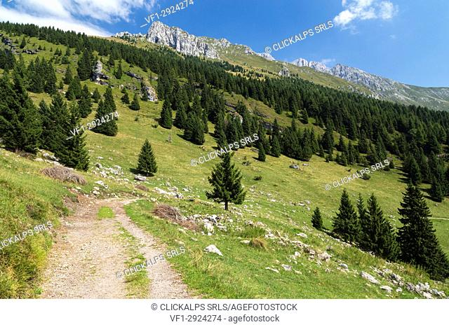 Trail to the Baita Cornetto, under the Presolana mountain, Castione della Presolana, Val Seriana, Bergamo district, Lombardy, Italy