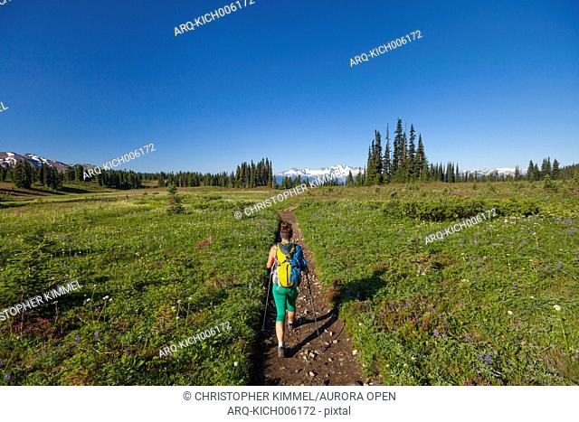 A young woman hiking through Taylor Meadows in Garibaldi Provincial Park, British Columbia, Canada