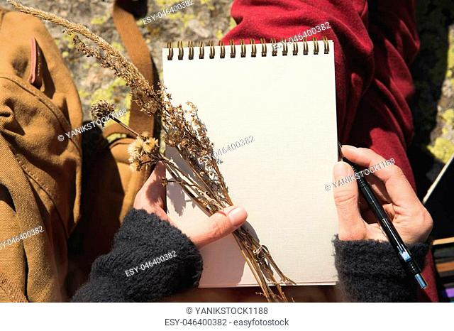 Close-up on the hands of a girl holding a blank notebook. A dry bouquet of herbs in her hand and a pencil. Travel designer artist